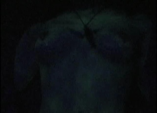 slaughterdisc-2.jpg